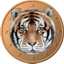 Tigercoin 64x64